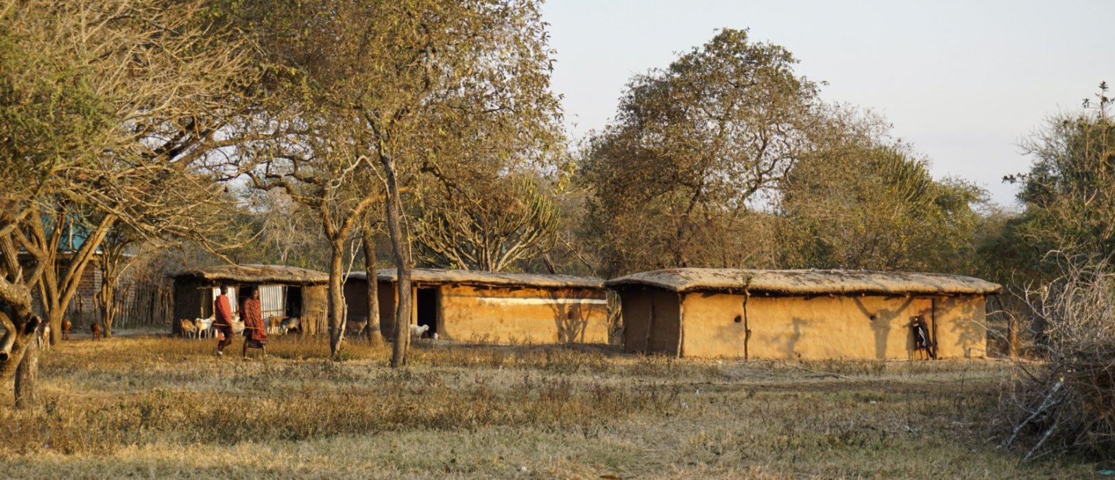 Boma in the bush, Manyara region, Tanzania - Experiencing The Globe