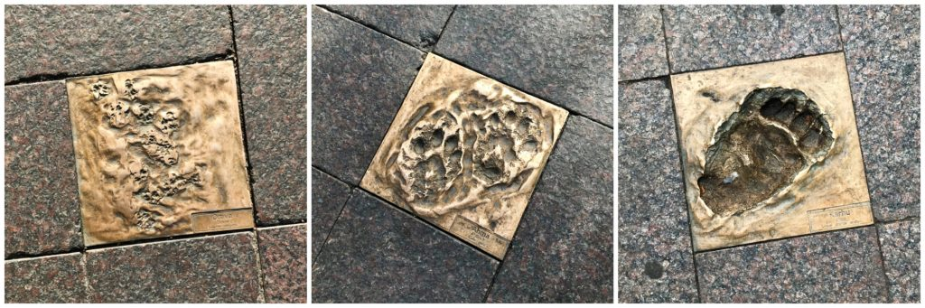Silent Footprints, Helsinki, Finland - Experiencing the Globe